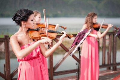 Image Filles joue du violon
