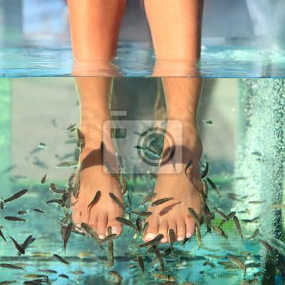 Fish Spa traitement de la peau