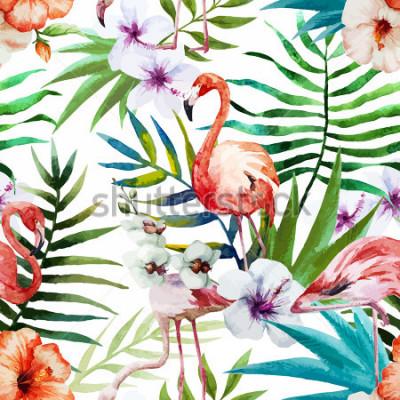 Image Flamants roses, aquarelle, tropiques, modèle