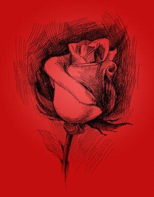 Image fleur croquis