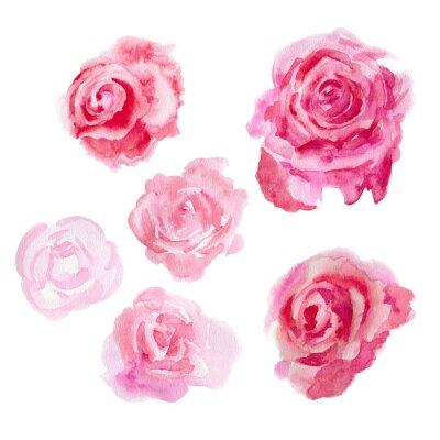 Image Fleurs d'aquarelle. Des roses