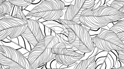 Image Foliage seamless pattern, long leaves line art ink drawing in black and white