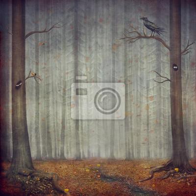 Forêt automnale. Beau, nature, fond