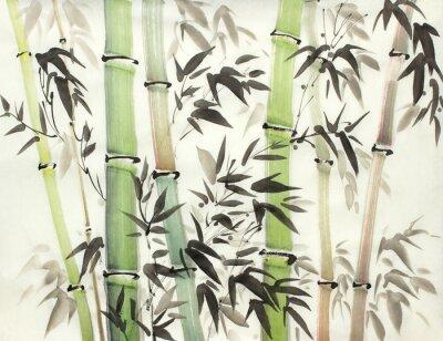 Image forêt de bambous