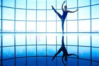 formation de ballet