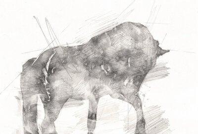 Image freehand horse head pencil drawing