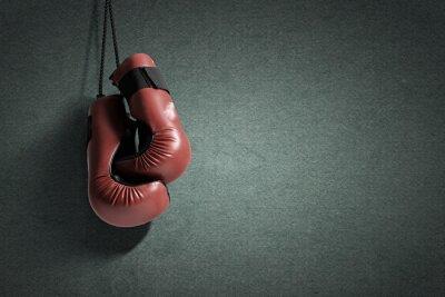 Image Gants de boxe