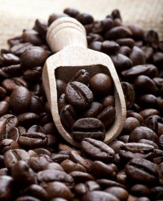 Image Grains de café