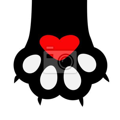Gros Pied De Patte De Chat Noir Avec Pied A Ongle Mignon Personnage
