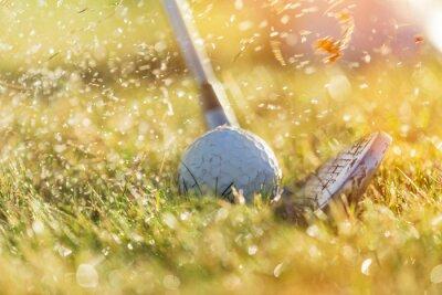 Image Gros plan, golf, balle