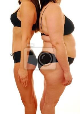 Grosse Femme Photo grosse femme et mince peintures murales • tableaux trouble, chubby