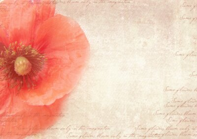 Image Grungy retro background with poppy flowers. A vintage styled collage with poppy flowers, faded handwriting on shabby old paper.  Postcard template.