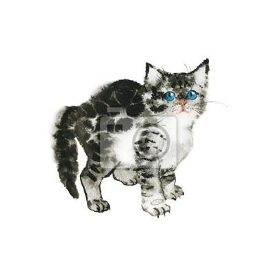 Hand drawn british grey chaton. Coquille de tortue aquarelle mignonne chaton mous. Peinture, isolé, animaux, illustration, blanc, fond