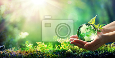 Image Hands Holding Globe Glass In Green Forest - Environment Concept