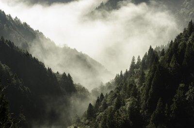 Image Haute, montagne, brume, nuage
