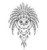 Hibou Dans Le Cafard Indien Coiffure Indienne De Plume Daigle