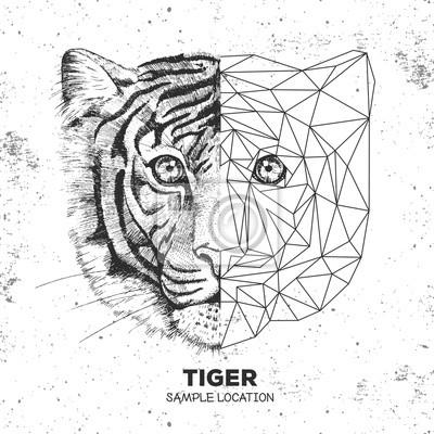 Hipster Animal Realiste Et Le Visage Du Tigre Polygonal Animal