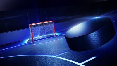 Image Hockey ice rink and goal