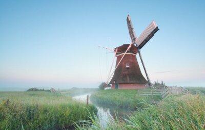 Image Hollandais, moulin à vent, matin, lumière