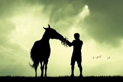 Image Homme, cheval, Coucher soleil
