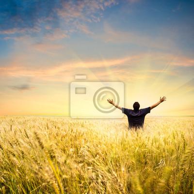 homme dans champ de blé