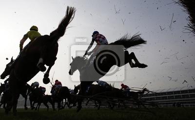 Image Horse Racing sauter la clôture