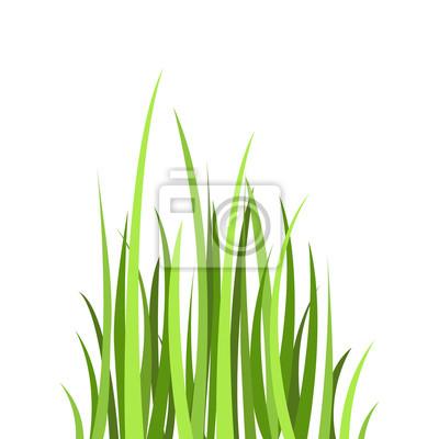 ic ne plate color e dessin vectoriel herbe verte de dessin peintures murales tableaux massif. Black Bedroom Furniture Sets. Home Design Ideas