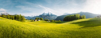Image Idyllic mountain landscape in the Alps with blooming meadows in springtime