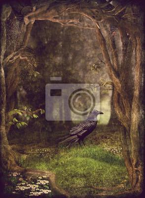 Illustrateur, exposition, corbeau, sombre, forêt