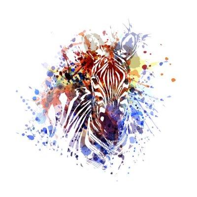 Illustration De Couleur De Vecteur De Zèbre Peintures Murales