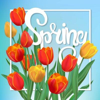 Image Illustration de ressort avec des tulipes et le cadre.