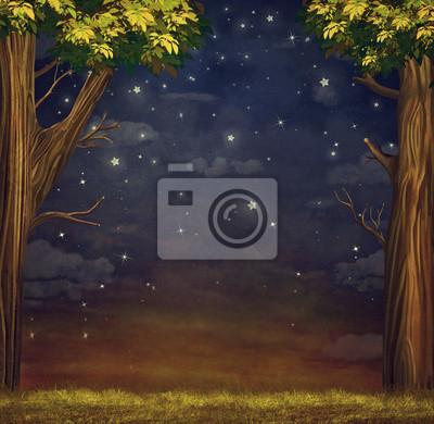 Illustration, forêt, étoiles, nuit, ciel