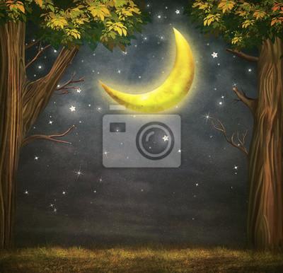 Illustration, forêt, fantastique, lune, étoiles, nuit, ciel