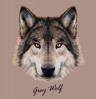 Image Illustration vectorielle numérique Portrait d'un loup.