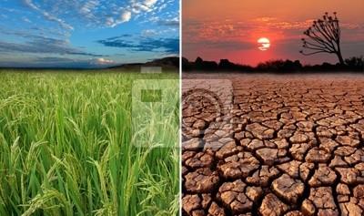 Images conceptuelles du réchauffement climatique