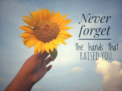 Image Inspirational motivational quote - Never forget the hands that raised you. With background of blue sky and beautiful sunflower blossom in hand. Photo concept with nature.