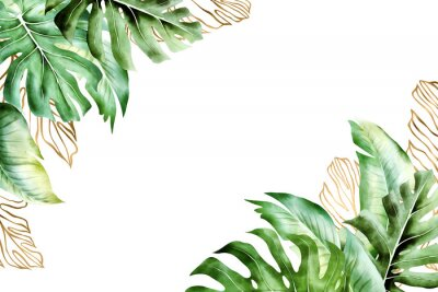 Image Isolated tropic palm leaves frame