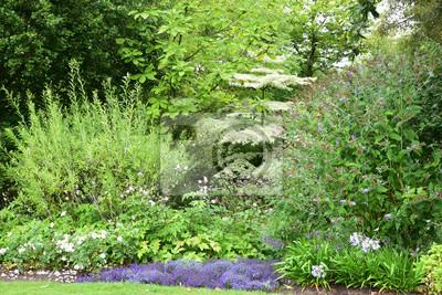 Jardin Anglais Peintures Murales Tableaux Herbe Herbe Arbre