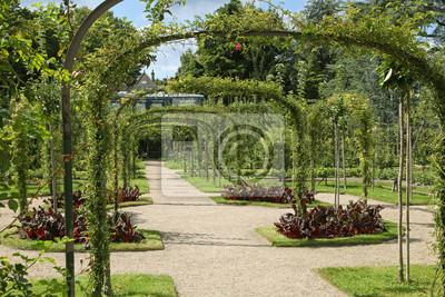 Jardin Anglais Albert Kahn Peintures Murales Tableaux Rosier