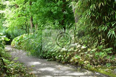 Jardin Anglais En Ete Peintures Murales Tableaux Tronc Bambou