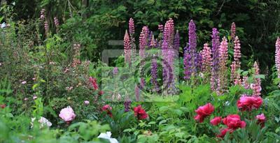 Jardin fleuri peintures murales • tableaux roseraie, lupin, à l ...