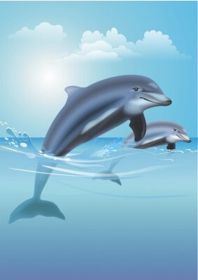Image Jumping Dolphins Illustration