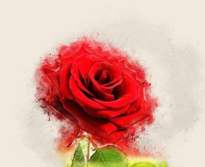 Image L'image grunge Rose