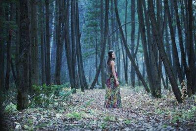 Image La fille dans une forêt sombre