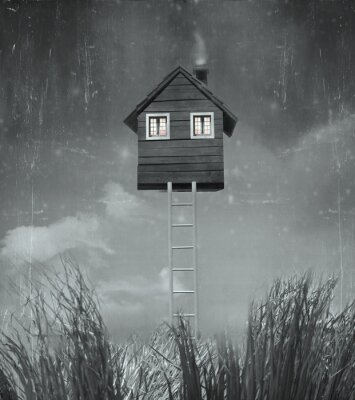 Image La maison volante