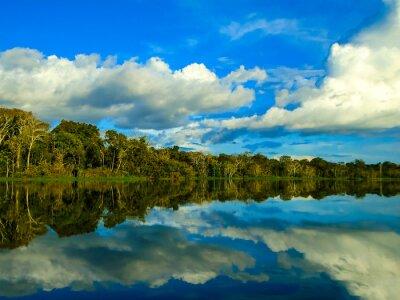 Image La rivière amazone