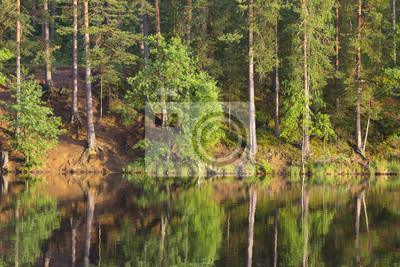 Lac ensoleillé