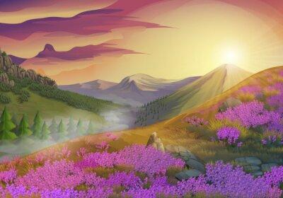 Image Lavande, été, soir, paysage, vecteur, fond