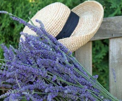 Image Lavande fraîche Couper avec Jardin Hat