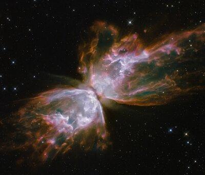 Le papillon émerge de la disparition stellaire de la nébuleuse planétaire.